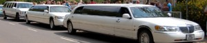 cropped-3-limos-at-Rauceby-primary-school-cover.jpg